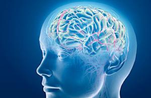 """Những """"mốc điểm"""" về nghiên cứu lâm sàng tai biến mạch máu não ở Việt Nam"""