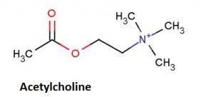Đánh giá nồng độ kháng thể kháng thụ cảm thể Acetylcholine ở bệnh nhân nhược cơ