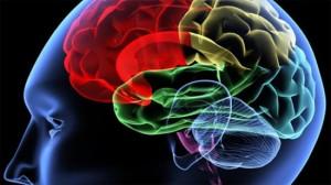 Nghiên cứu nồng độ Homocystein, acid folic và Vitamin B12 huyết tương ở bệnh nhân nhồi máu não
